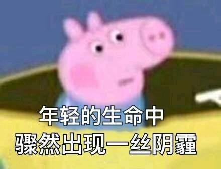 粉色的猪表情包分享图片
